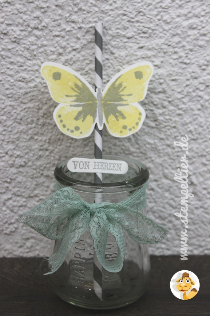 stampinup_stempeltier_butterfly_schmetterling_watercolor_wings_grey_schiefergrau_party_deko_strohhalmglas