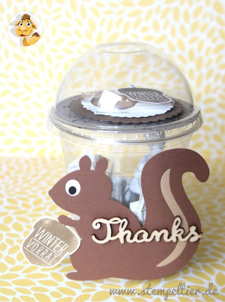 stampin up domecup dombecher smoothiebecher verpacken herbst eichhörnchen squirrel fall