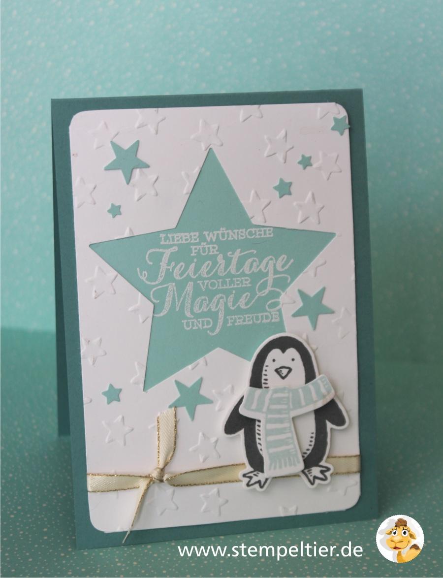 stampin up stempeltier es schneit pinguin penguin snow friends winter stars Stern