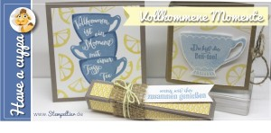 stampin up vollkommene momente have a cuppa tea Tee anleitung tutorial frühjahr sommerkatalog SAB saleabration 2016 amicelli