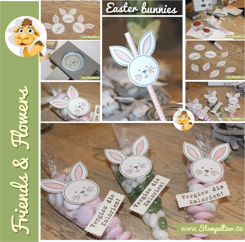 stampin up friends and flowers hase ostern easter bunny tüte Polka Dot Cone Cellophane Bags verpackung anleitung