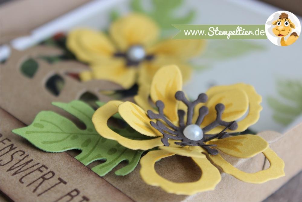 stampin up botanical blooms botanischer garten grußkarte geschenkbox anleitung tororial video