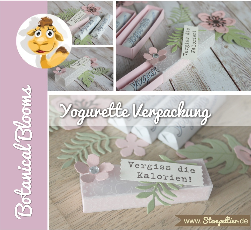 2016 yogurette Verpackung anleitung tutorial stampin up stempeltier botanical blooms box chocolate goodie verpacken preview tutorial