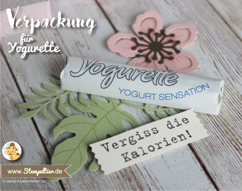 2016 yogurette Verpackung anleitung tutorial stampin up stempeltier botanical blooms box chocolate goodie verpacken preview2