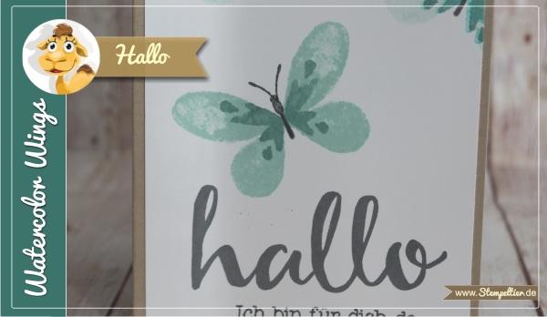 hallo watercolor wings onstage 2016 zeitvertreib stampin up stempeltier watercolor wings hallo gemeinsam stark