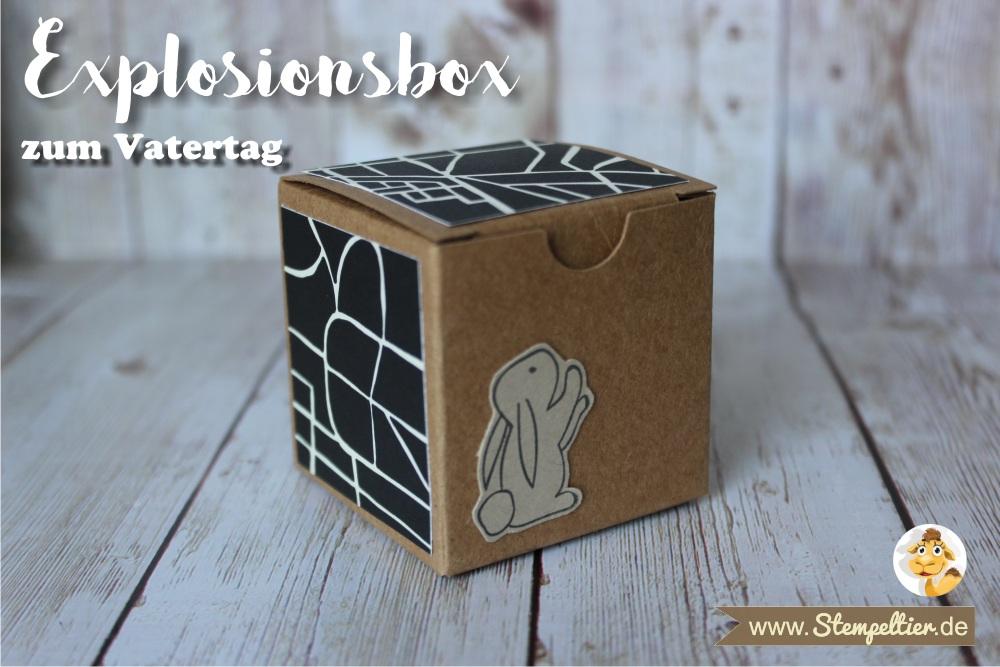explosionsbox mini geschenkschachtel vatertag fathers day stampin up stempeltier männlich verpackung