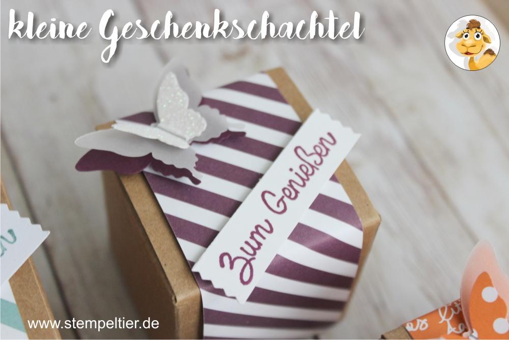 stampin up brombeermousse designerpapier DSP inColor geschenkschachtel goodie verpackung stempeltier