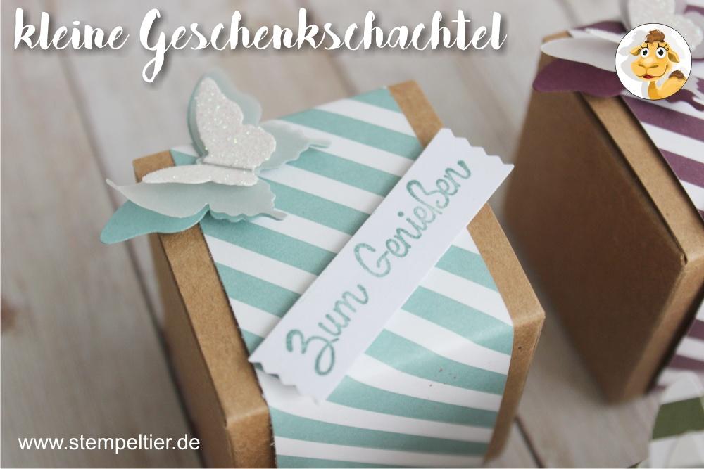 stampin up lagunenblau designerpapier DSP inColor geschenkschachtel goodie verpackung lost lagoon stempeltier
