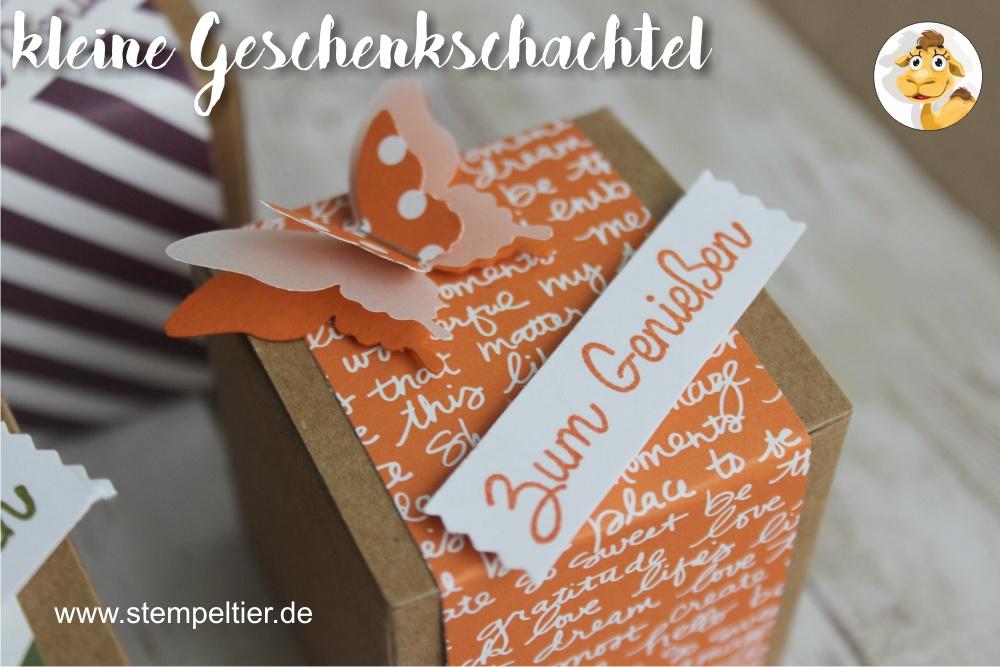 stampin up orangentraum designerpapier DSP inColor geschenkschachtel goodie verpackung stempeltier