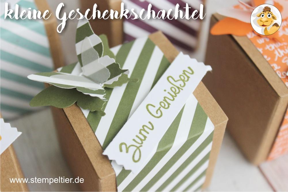 stampin up waldmoos designerpapier DSP inColor geschenkschachtel goodie verpackung stempeltier