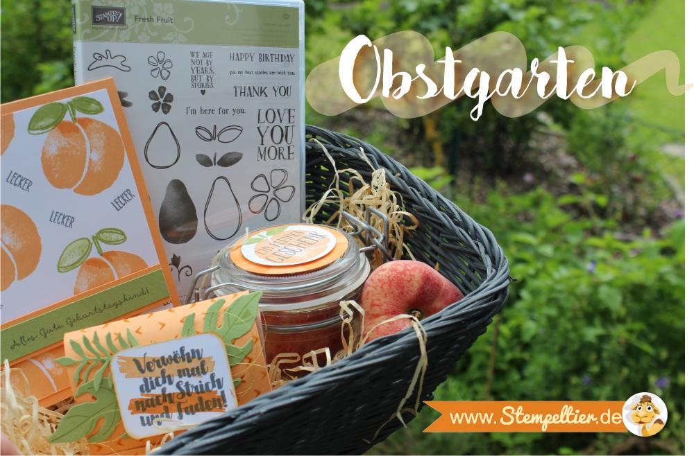 Obstgarten Geschenkkorb von Stampin Up mit Fresh Fruit in Pfirsich Pur peekaboo peach made by Stempelteri