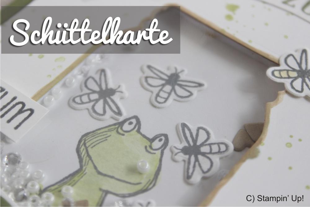 schüttelkarte vom Stempeltier mit glasklare Grüße und Love you lots Frosch von Stampin Up everyday Jars framelits 1