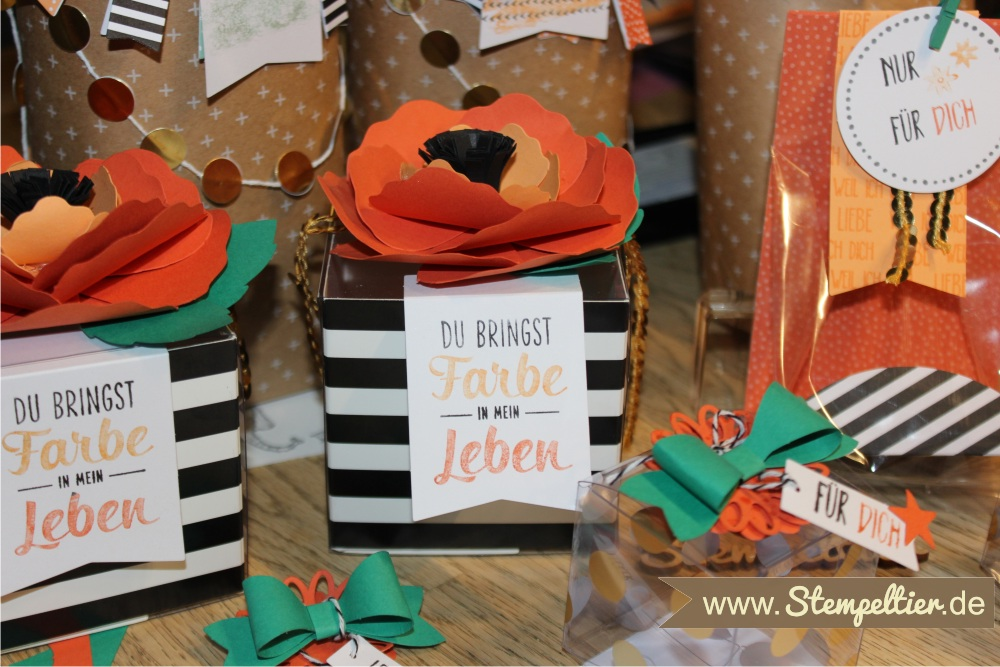 stampin up workshop kit du bringst Farbe in mein Leben Perfekt Verpackt beim Stempeltier Perfectly Wrapped bags