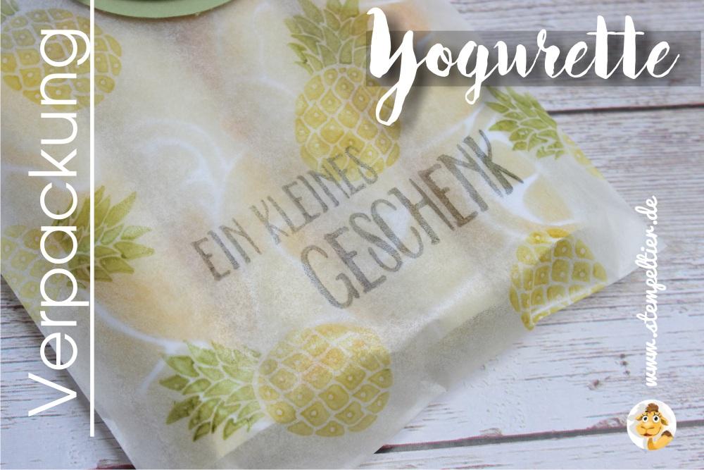stampin up yogurette verpackung verpacken anleitung ananas limette vom Stempeltier goodie fresh fruit kleines geschenk obstgarten
