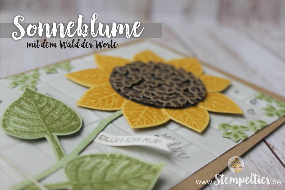 stampin Up summerfeeling bloghop thoughtful branches stempelnd durchs jahr stempeltier sonnenblume wald der worte sunflower