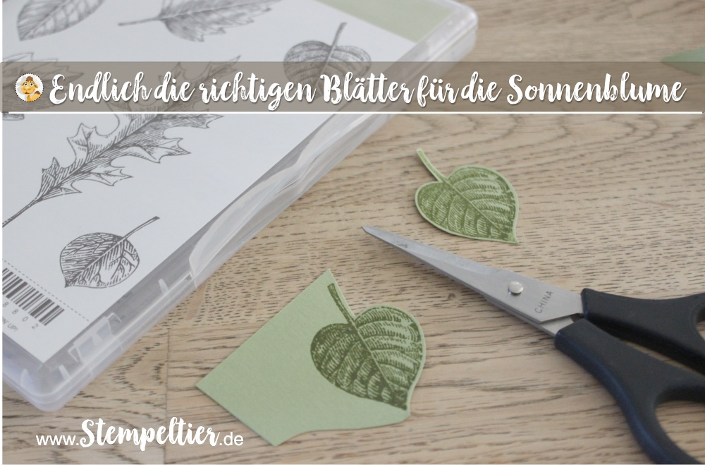 stampin Up thoughtful branches vintage leaves stempeltier sonnenblume wald der worte sunflower