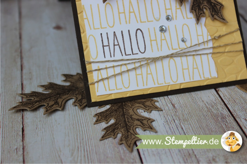 hallo-gute-laune-gruesse-kartenset-stampin-up-vintage-leaves-herbst-stempeltier