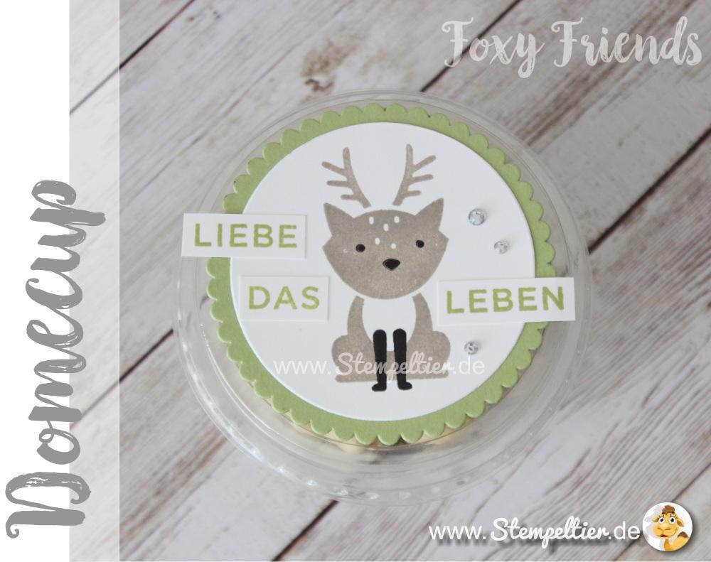 domecup-clear-cup-smoothie-becher-foxy-friends-ausgefuchst-von-stampin-up-by-stempeltier-verpackung-nuesse-winter-herbst