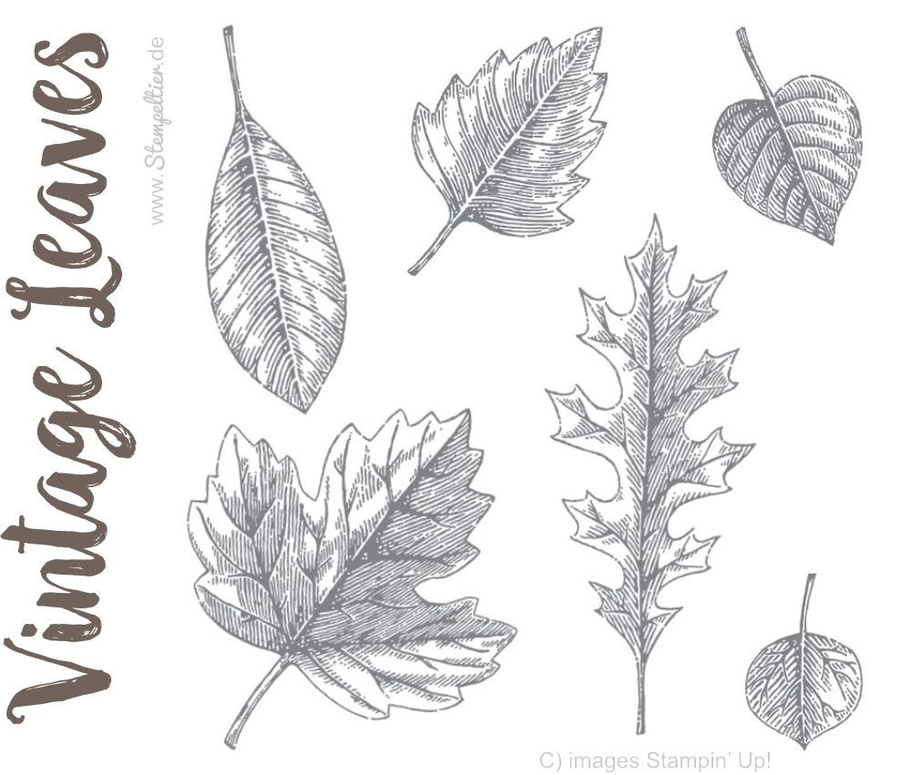 vintage leaves leaflets by stampin up herbst herbstblaetter laub stempeltier