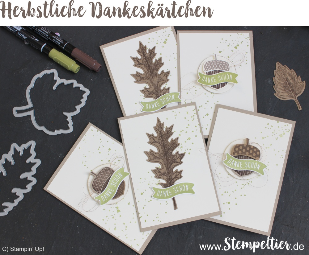 stampin-up-acorny-thank-you-vintage-leaves-leaflets-herbstgruesse-eichel-herbst-fall-thank-you-danke-customer-appreciation-cards-by-stempeltier-framelits-formen-laub