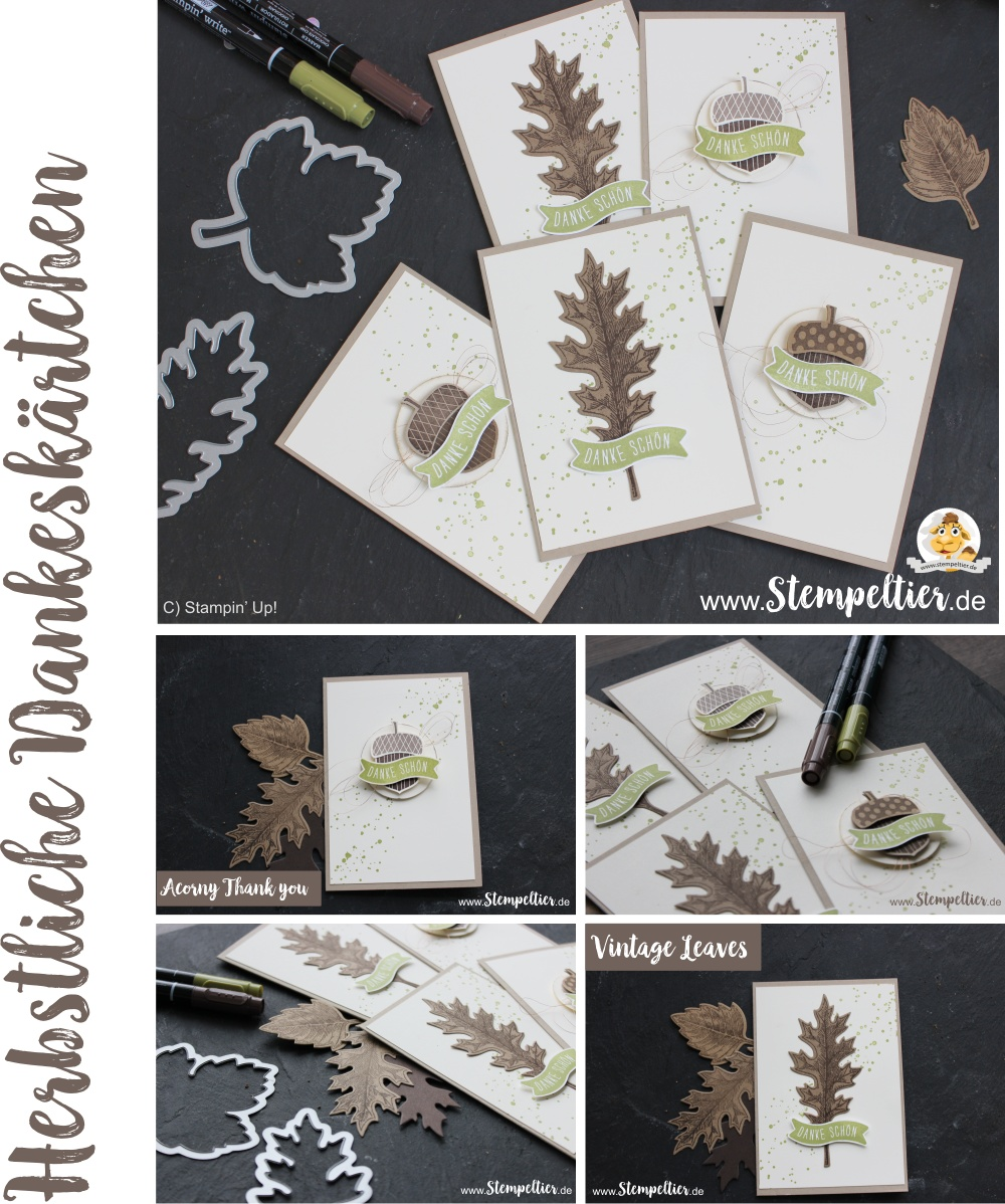 stampin-up-acorny-thank-you-vintage-leaves-leaflets-herbstgruesse-eichel-herbst-fall-thank-you-danke-customer-appreciation-cards-by-stempeltier laub