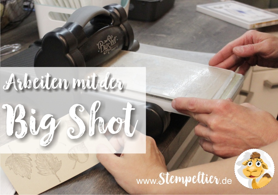 stampin up blog workshop bigShot beim Stempeltier kaufbeuren kempten landsberg