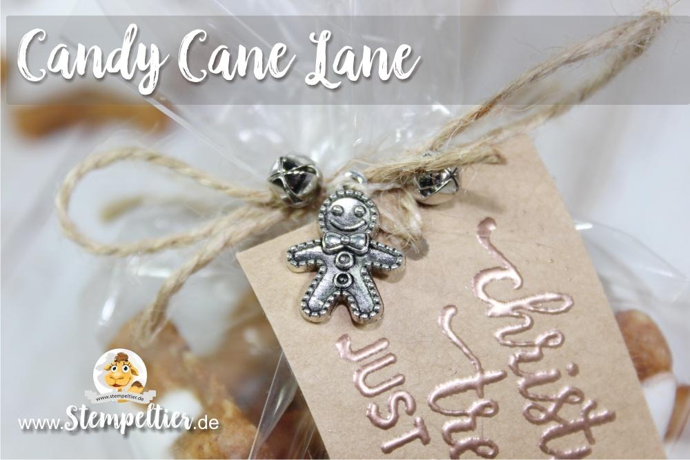 stampin up blog candy cane lane christmas treats zimtstern cellophane bag stempeltier lebkuchenmann glöckchen copper Kupfer