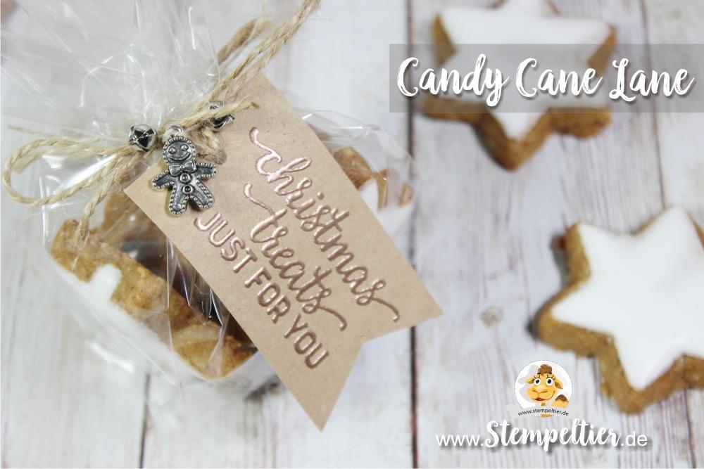 stampin up blog candy cane lane christmas treats zimtstern cellophane bag stempeltier lebkuchenmann weihnachten treats
