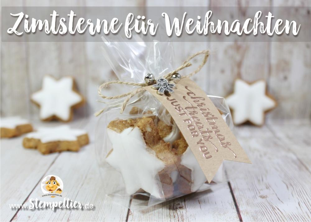 stampin up blog candy cane lane christmas treats zimtstern cellophane bag stempeltier weihnachten treats