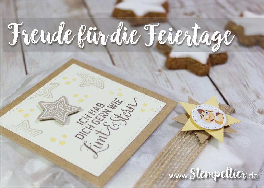 stampin up blog freude für die feiertage weihnachten verpacken zimt stern plätzchen verpacken stempeltier geschenk
