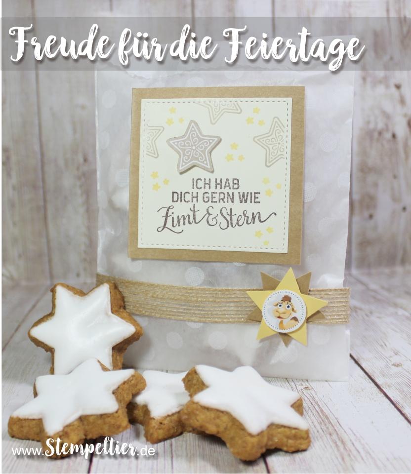 stampin up blog freude für die feiertage weihnachten verpacken zimt stern plätzchen verpacken stempeltier