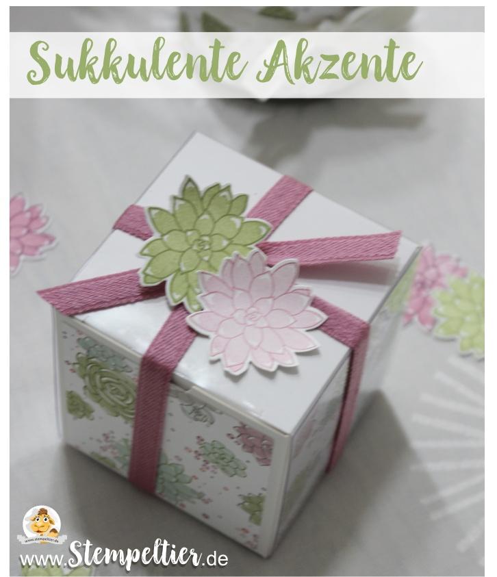 stampin up sukkulente Akzente succulent frühjahr sommerkatalog 2017 stempeltier geburstag geschenk verpackung