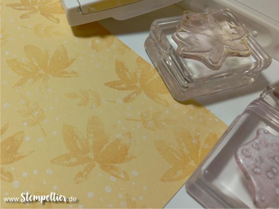 stampin up SAB gartengrüße hintergrund stempeln für Geburtstagskarte
