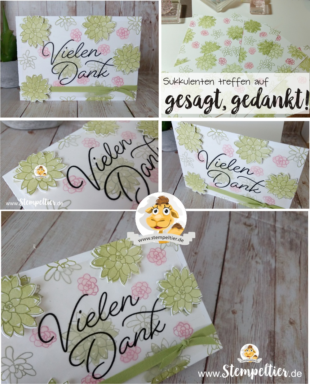 stampin up sab 2017 gesagt gedankt sukkulenten succulent so very much dankeskarte stempeltier blog