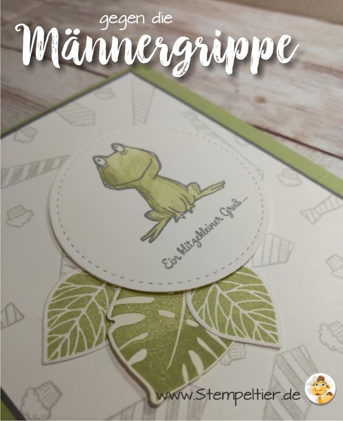 stampin up blog männerkarte loveyoulots frosch männergrippe gute besserung maskulin