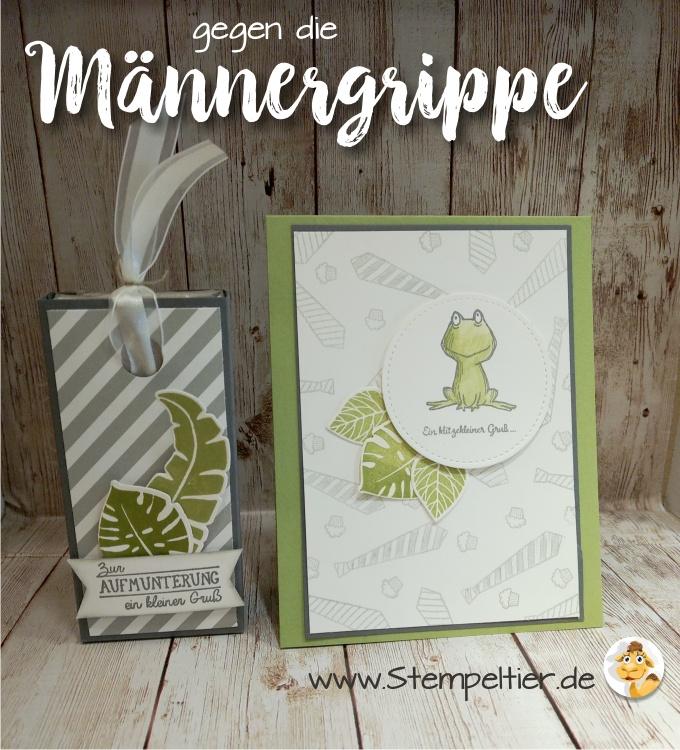 stampin up blog männerkarte loveyoulots frosch männergrippe gute besserung