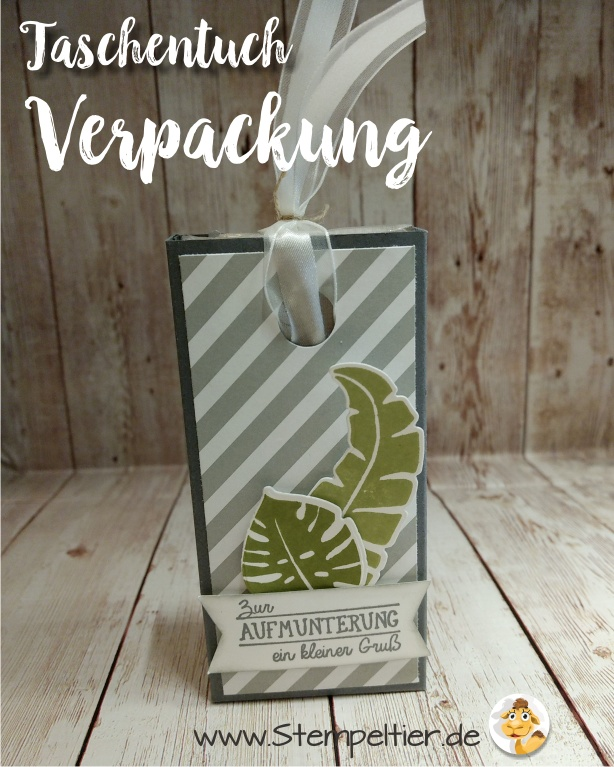 stampin up blog männerkarte loveyoulots frosch männergrippe taschentuch verpackung ziehverpackung tempo
