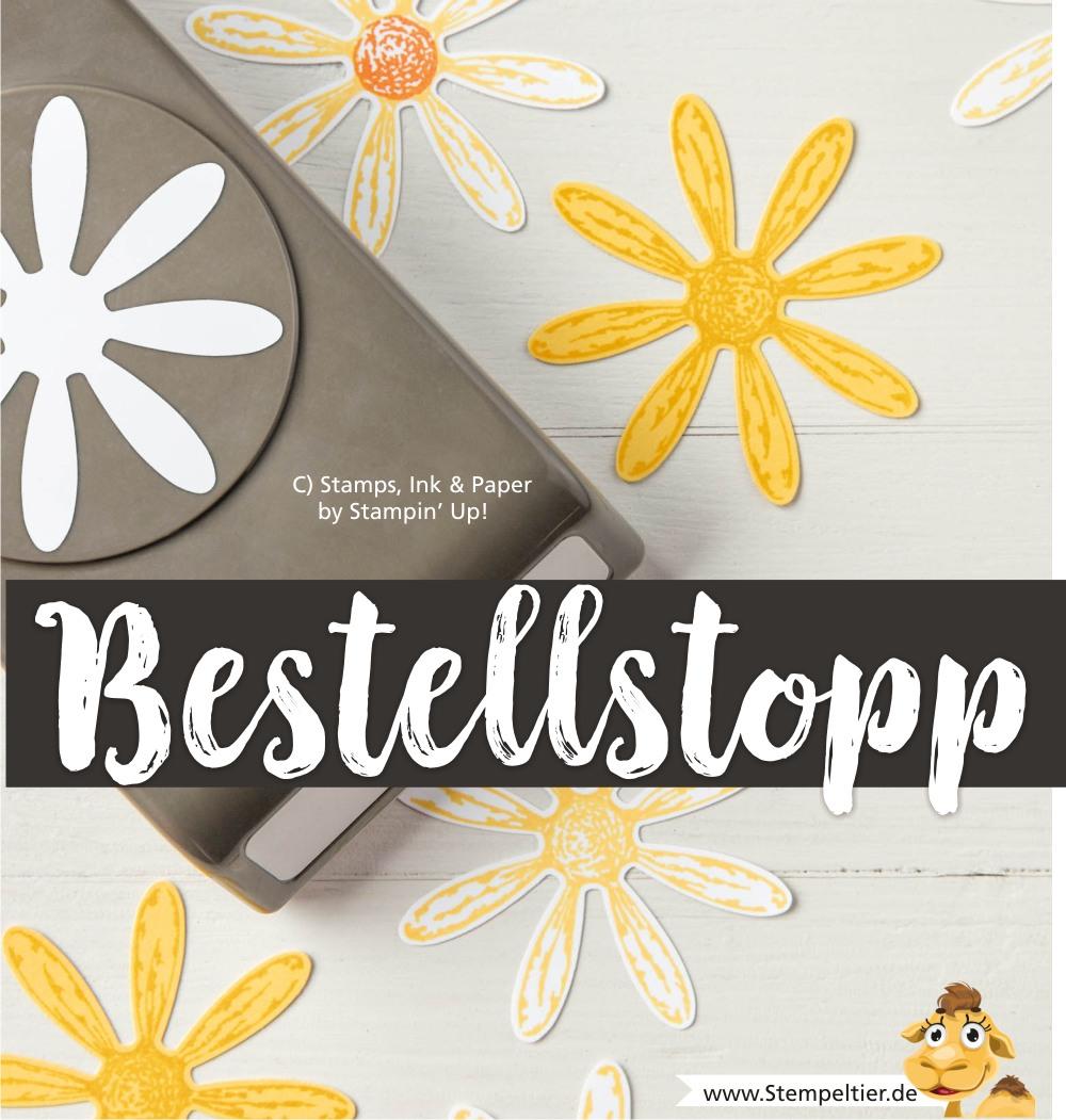 bestellstopp nicht lieferbar stampin up blog gänseblümchen stanze daisy delightful punch stempeltier
