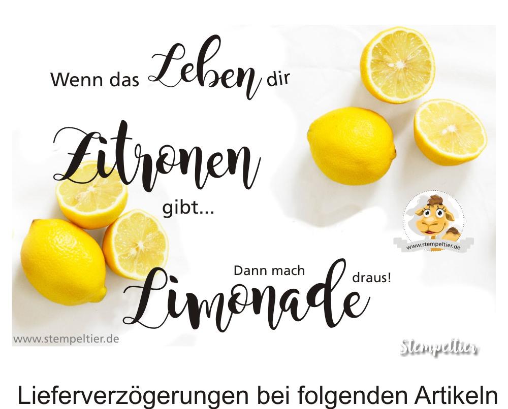 limone zitrone lemon zest stampin up when life gives you lemons wenn das leben dir zitronen gibt limonade