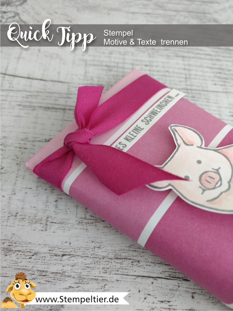 stampin up blog glücksschweinchen this little piggy stempel zerschneiden trennen anleitung tutorial stempeltier video pig