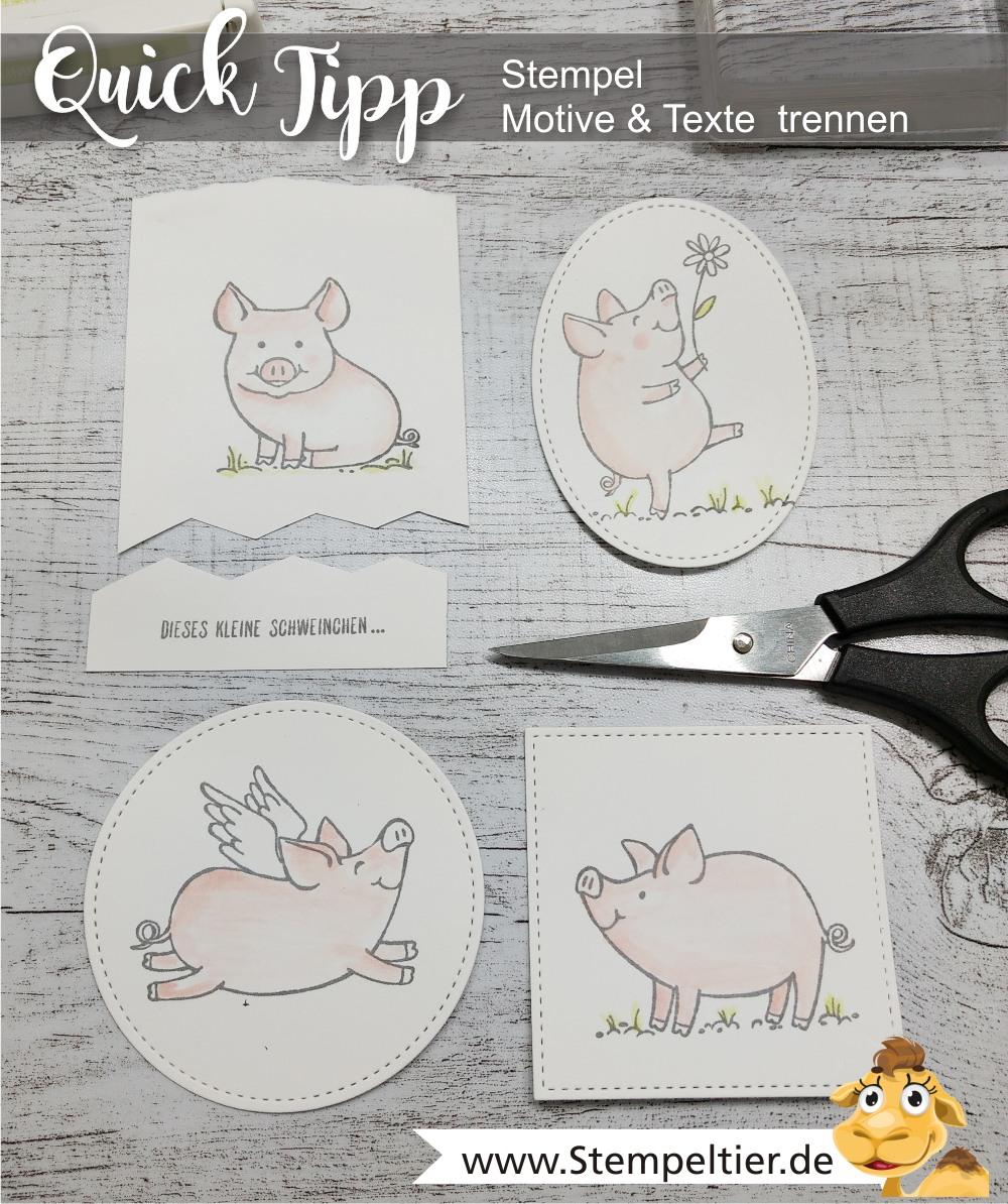 stampin up blog glücksschweinchen this little piggy stempel zerschneiden trennen anleitung tutorial stempeltier video piglet