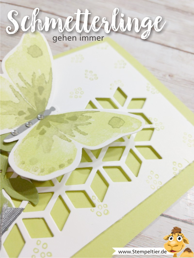 stampin up blog watercolor wings schmetterling limette eclectic layers thinlits stempeltier wings
