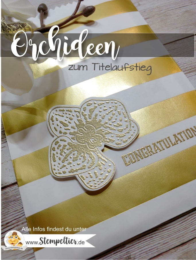 stampin up blog team titelaufstieg glückwunsch elite bronze kupfer letters for you orchideen orchid builder stempeltier 1