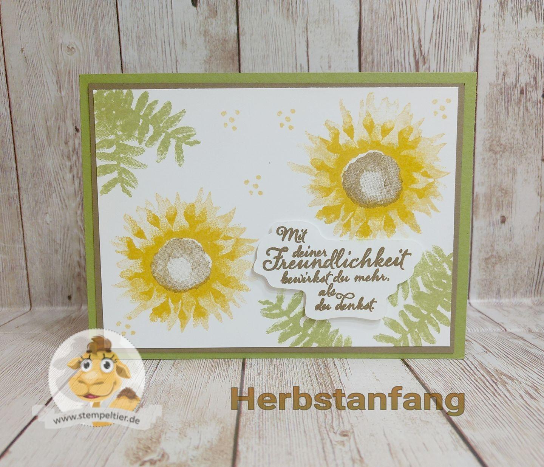 stampin up vorschau herbstanfang sonnenblumen 2step winterkatalog 2017 blätterzweig sunflower fall autumn preview stempeltier