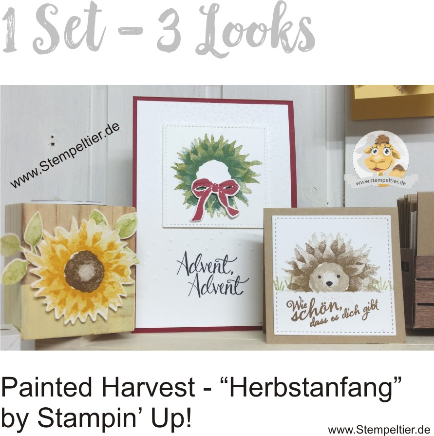 stampin up painted harvest herbstanfang igel wreath sonnenblume stempeltier
