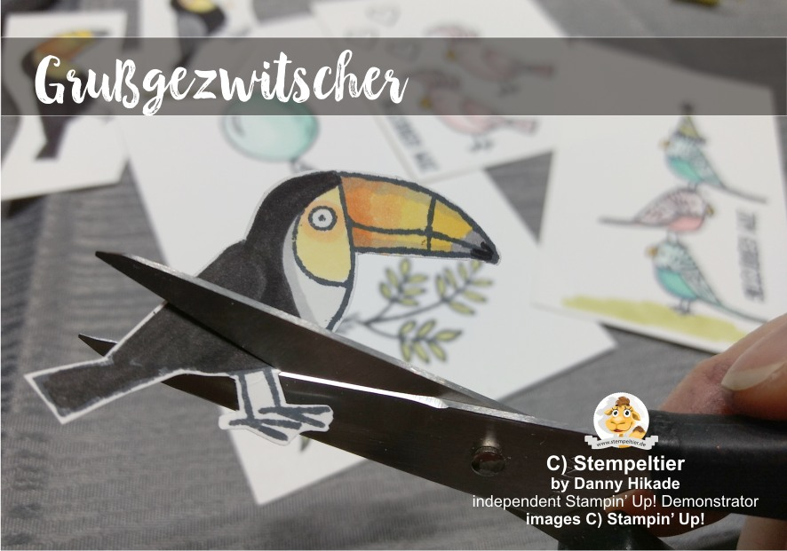 tukan stampin up occasions 2018 SAB tucan Tukan Vögel Grußgezwitscher Bird Banter