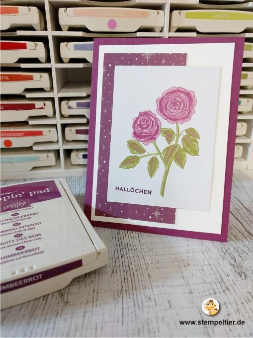 stampin up erinnerungen und mehr blumengarten kärtchen grußkarte geburtstag hallöchen