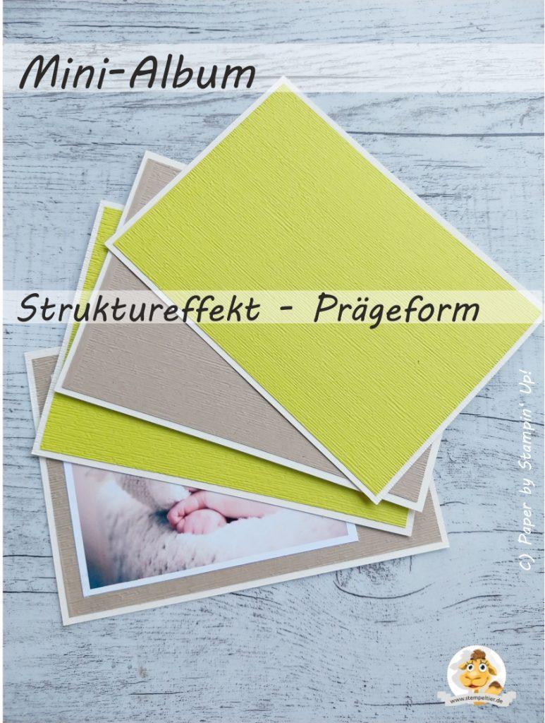 stampin up minialbum struktureffekt prägeform subtle texture embossing folder