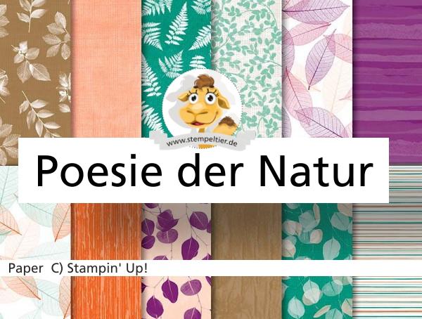 stampin up poesie der natur natures poeem DSP Herbst stempeltier