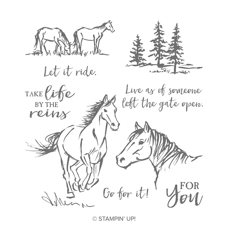 stampin up pferde reiten reitstunden gutschein horses let it ride
